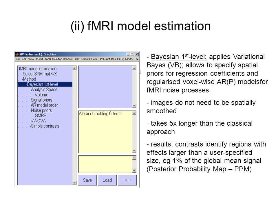 (ii) fMRI model estimation