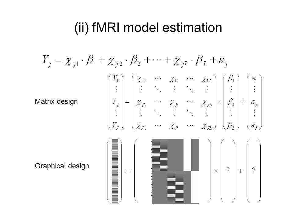 (ii) fMRI model estimation