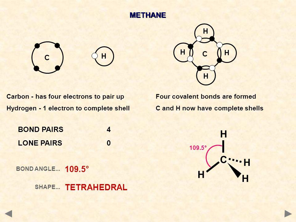 C H 109.5° TETRAHEDRAL METHANE H C H C BOND PAIRS 4 LONE PAIRS 0