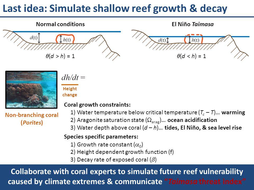 Parametric coral model Non-branching coral (Porites)