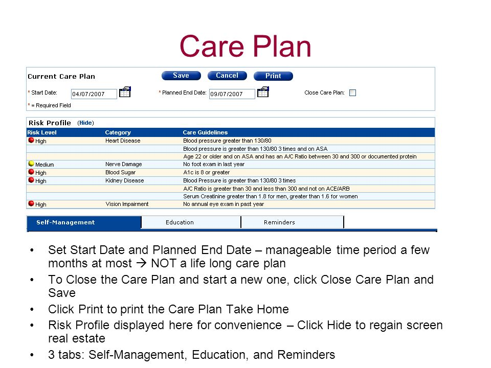 Care PlanPrint button only displays after the Care Plan has been saved.