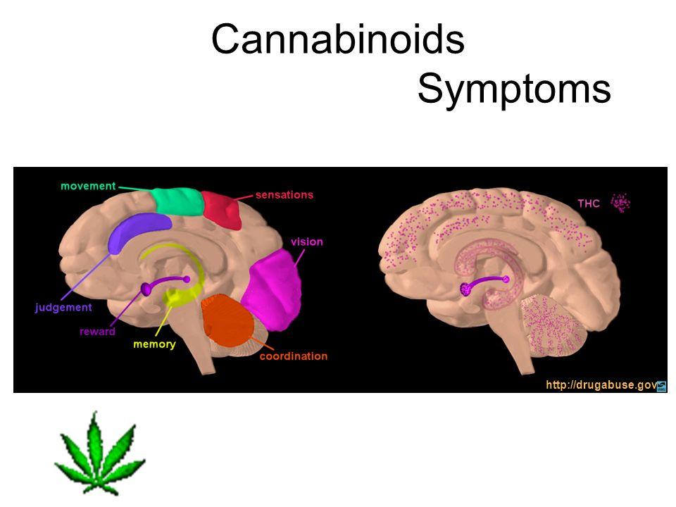 Cannabinoids Symptoms