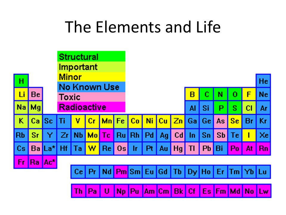 The Elements and Life