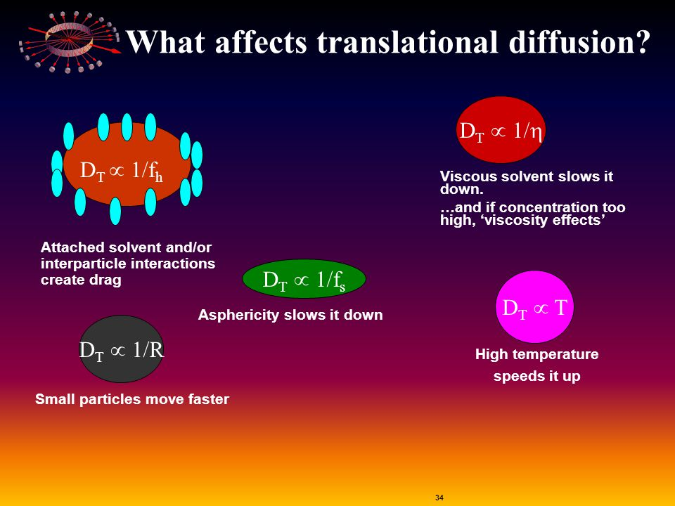 What affects translational diffusion