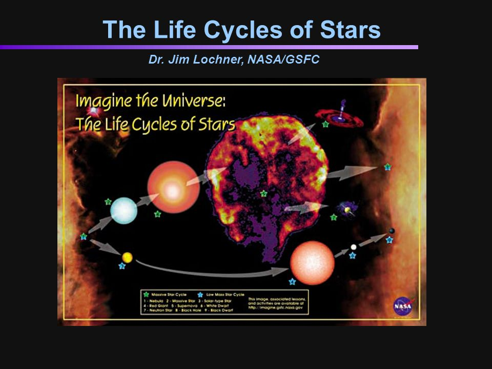 The Life Cycles of Stars