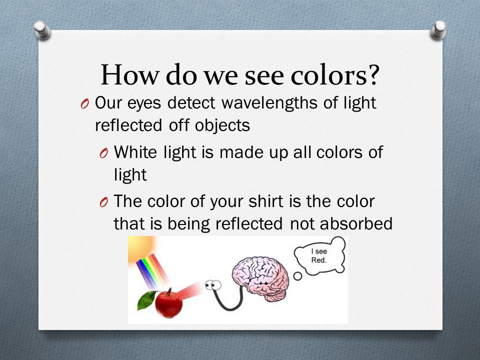 How do we see colors Our eyes detect wavelengths of light reflected off objects. White light is made up all colors of light.