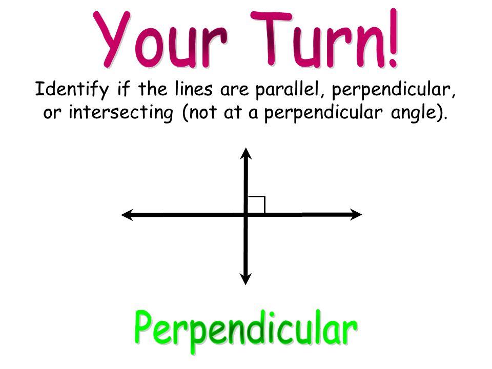 Your Turn! Perpendicular