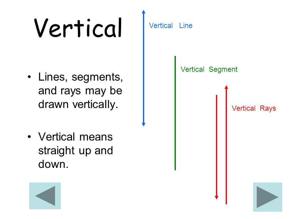 Vertical Lines, segments, and rays may be drawn vertically.