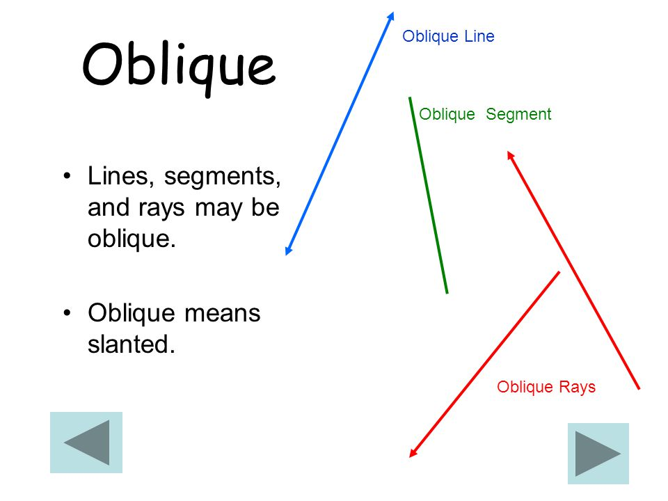 Oblique Lines, segments, and rays may be oblique.