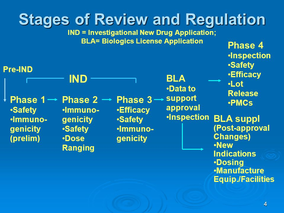 Phase 1 Safety. Immuno-genicity (prelim) Phase 2. Immuno-genicity. Dose Ranging. Phase 3. Efficacy.