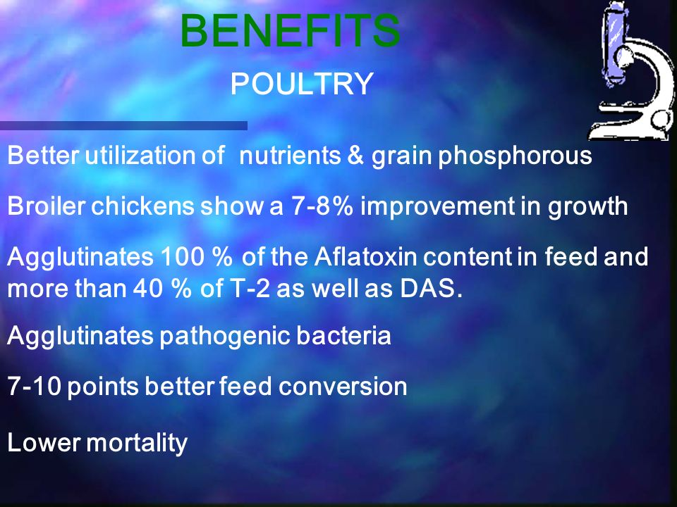 BENEFITS POULTRY Better utilization of nutrients & grain phosphorous