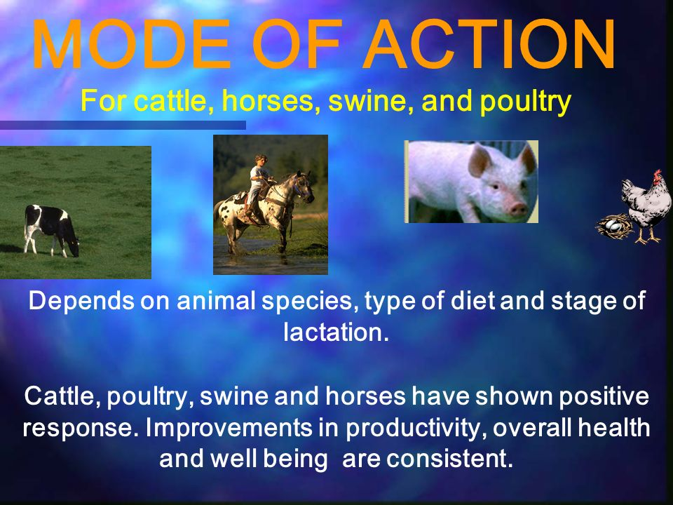 MODE OF ACTION For cattle, horses, swine, and poultry