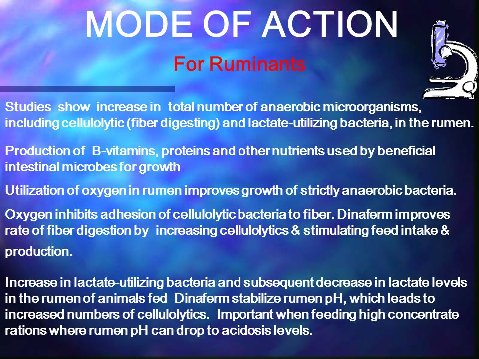 MODE OF ACTION For Ruminants