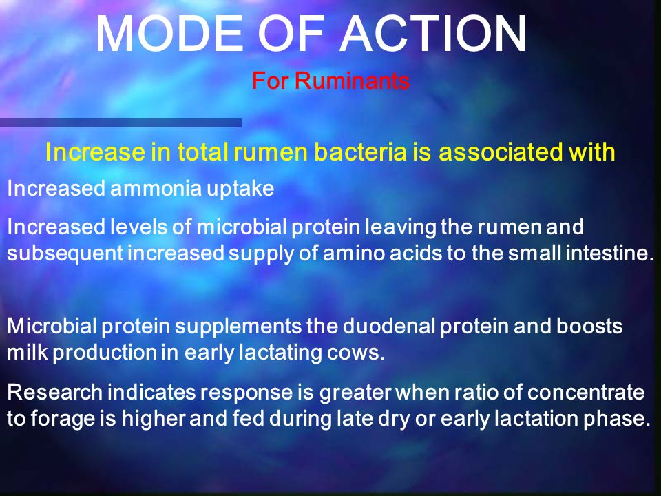 Increase in total rumen bacteria is associated with