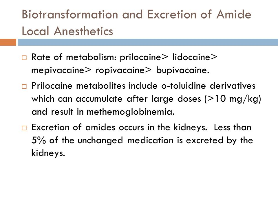 Biotransformation and Excretion of Amide Local Anesthetics