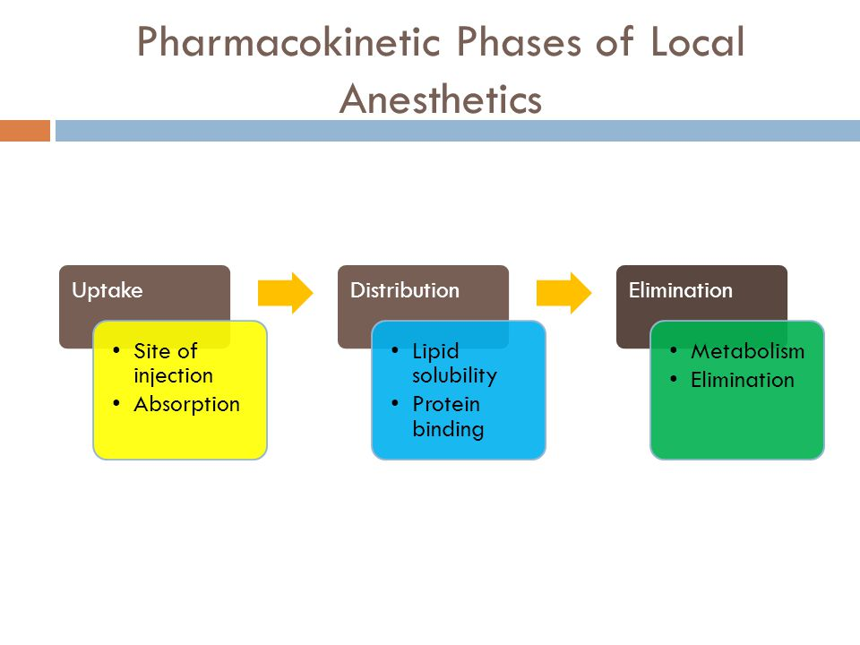Pharmacokinetic Phases of Local Anesthetics