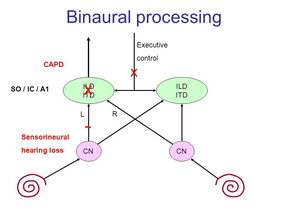 Binaural processing x x ~ Executive control CAPD ILD ITD CN