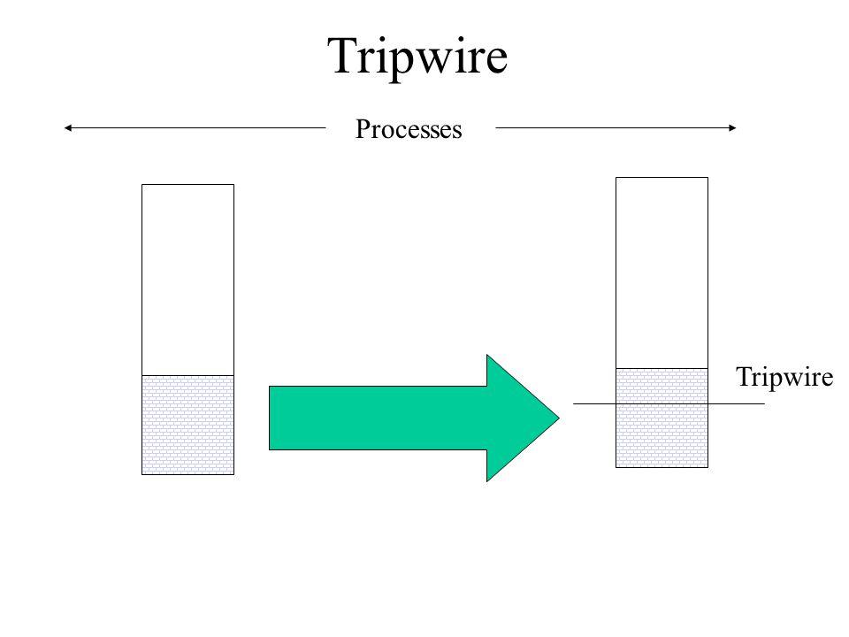Tripwire Processes Tripwire
