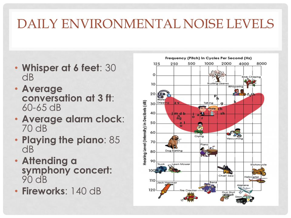 Daily Environmental Noise Levels