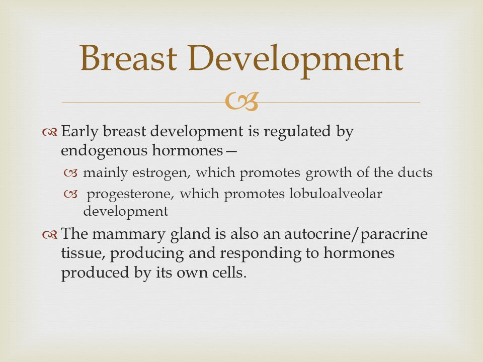 Breast Development Early breast development is regulated by endogenous hormones— mainly estrogen, which promotes growth of the ducts.