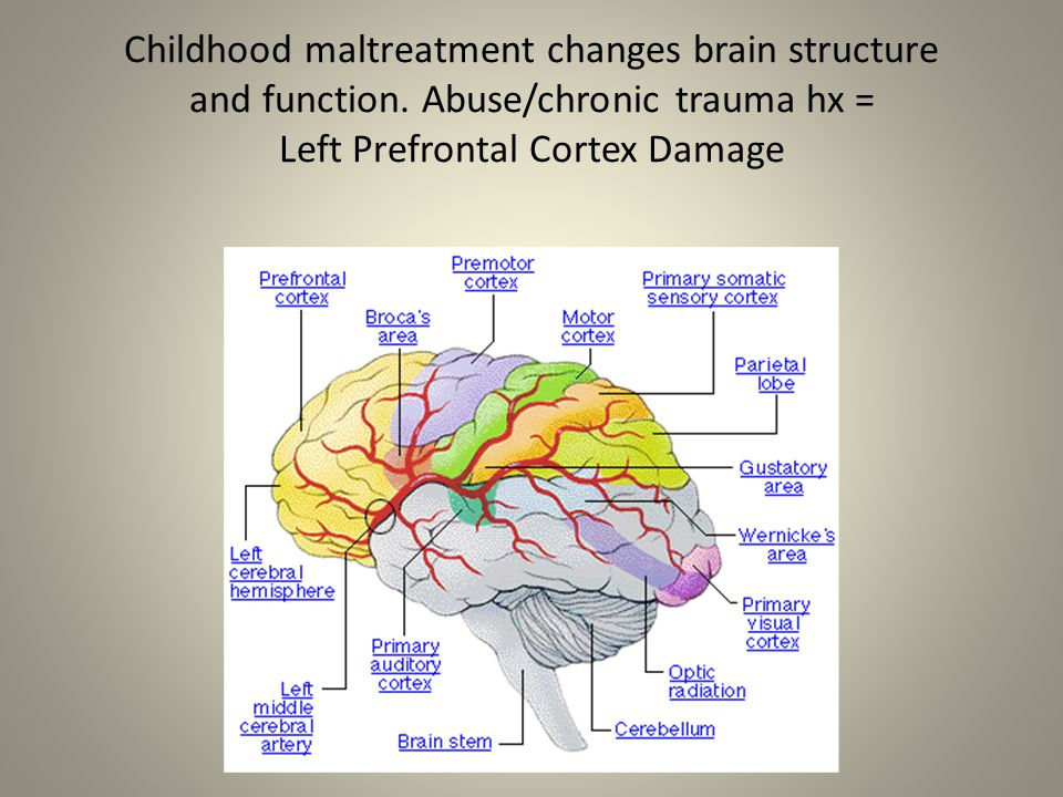 Childhood maltreatment changes brain structure and function