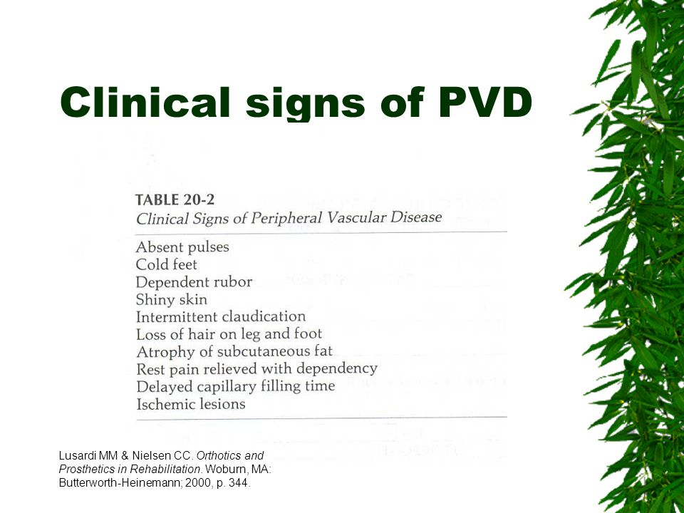Clinical signs of PVD Lusardi MM & Nielsen CC. Orthotics and Prosthetics in Rehabilitation.