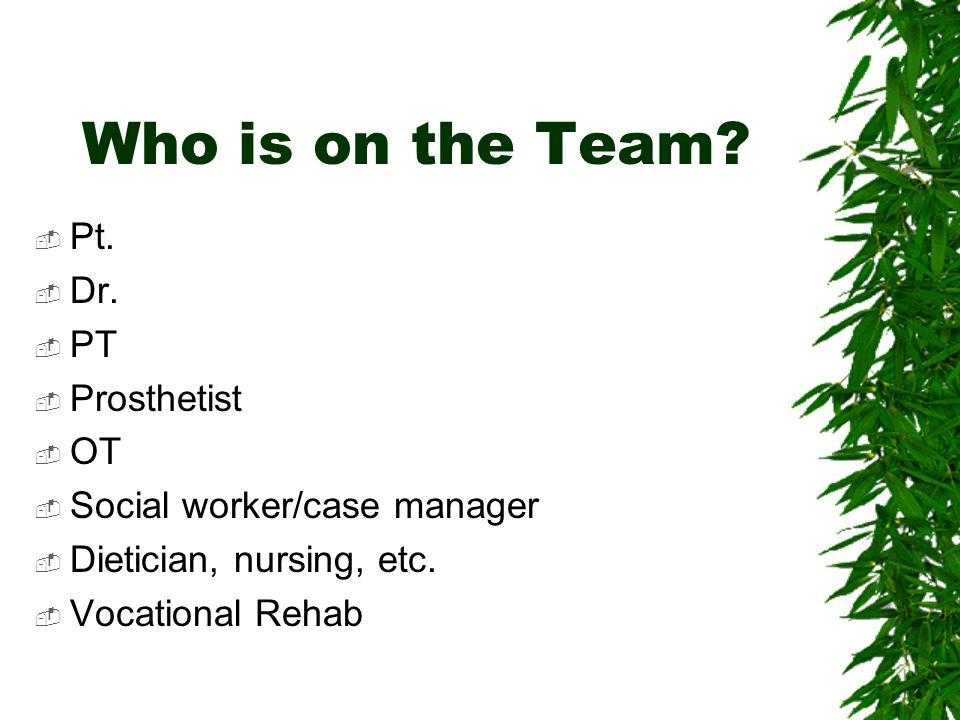 Who is on the Team Pt. Dr. PT Prosthetist OT