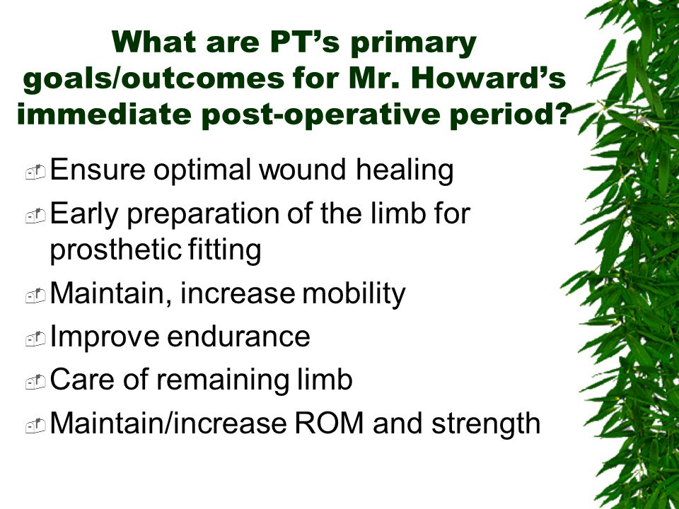 What are PT's primary goals/outcomes for Mr