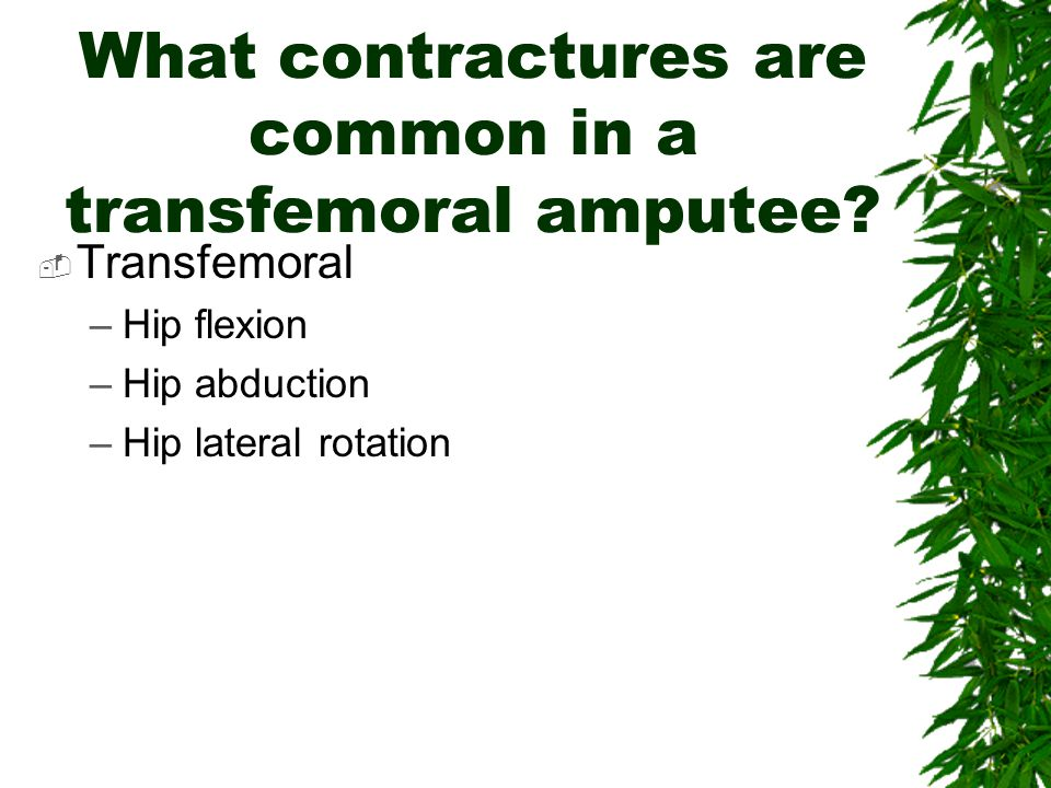 What contractures are common in a transfemoral amputee