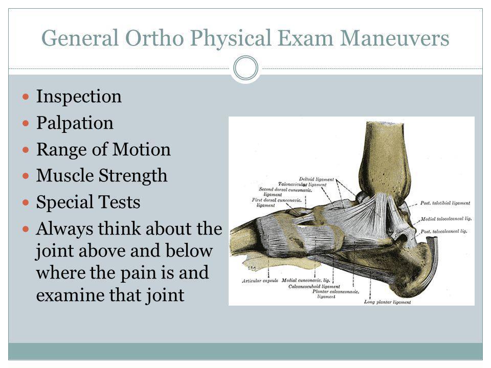 General Ortho Physical Exam Maneuvers