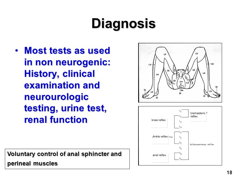 Diagnosis Most tests as used in non neurogenic: History, clinical examination and neurourologic testing, urine test, renal function.