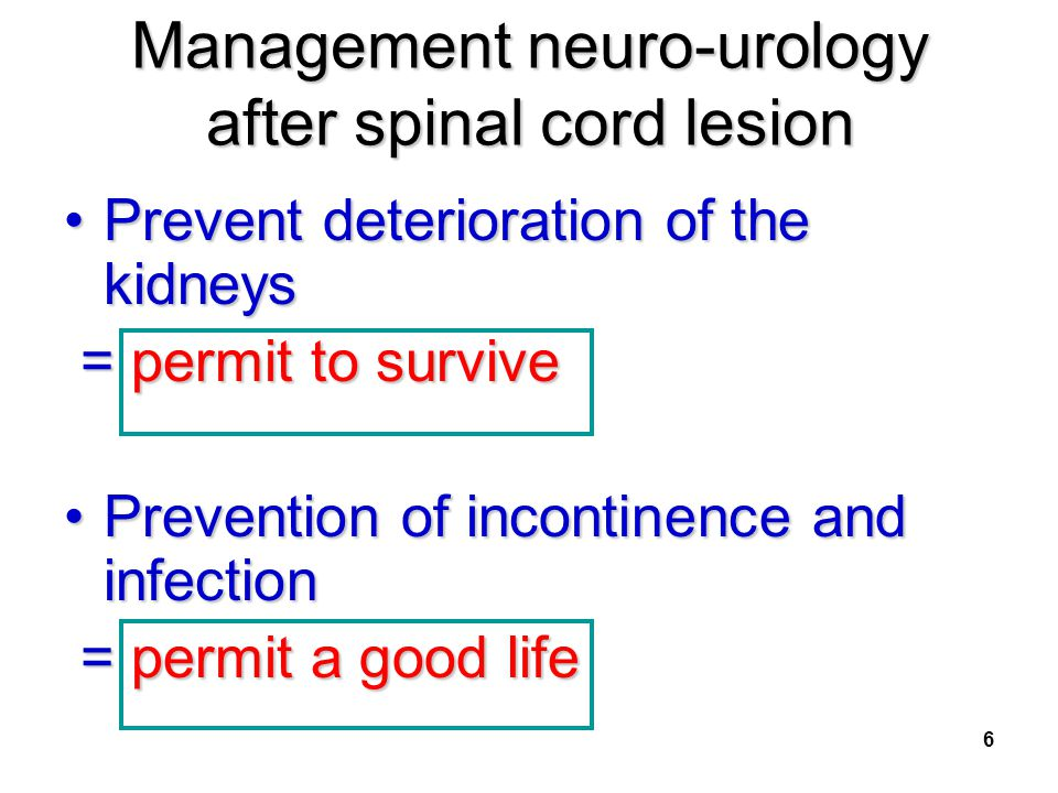 Management neuro-urology after spinal cord lesion