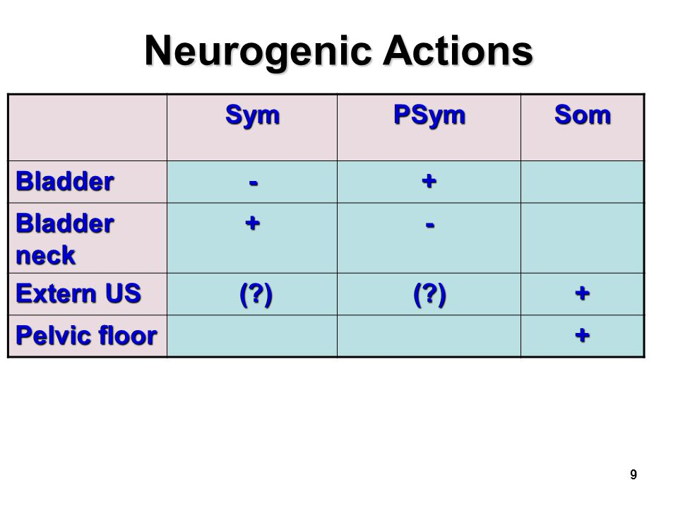 Neurogenic Actions Sym PSym Som Bladder - + Bladder neck Extern US ( )