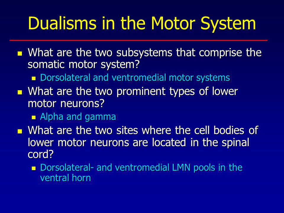 Dualisms in the Motor System