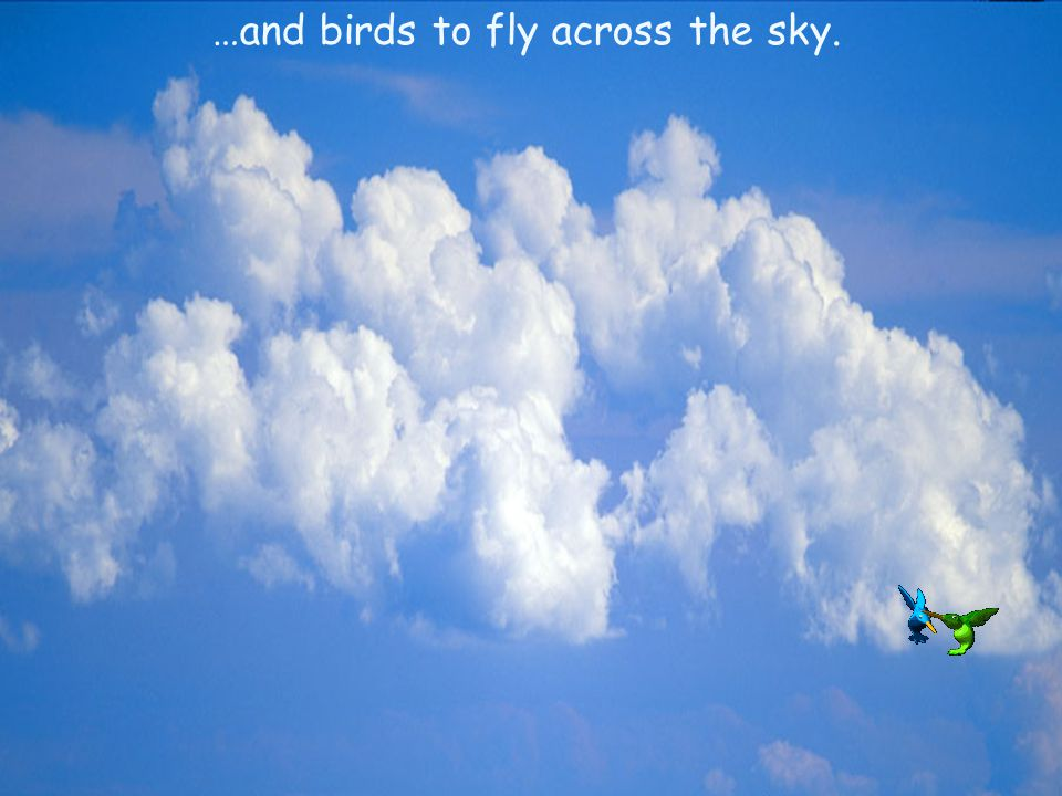 …and birds to fly across the sky.