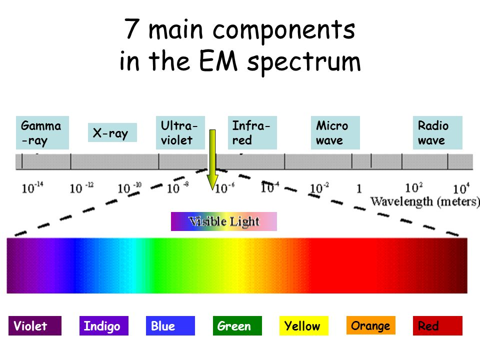 7 main components in the EM spectrum