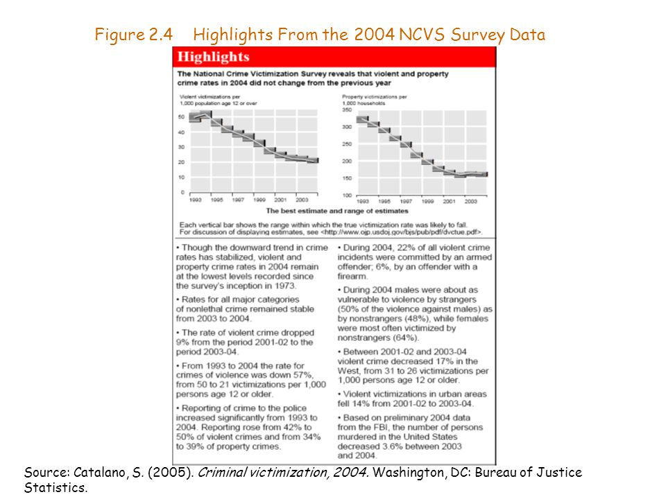 Figure 2.4 Highlights From the 2004 NCVS Survey Data