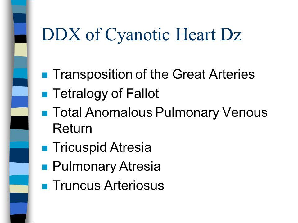 DDX of Cyanotic Heart Dz