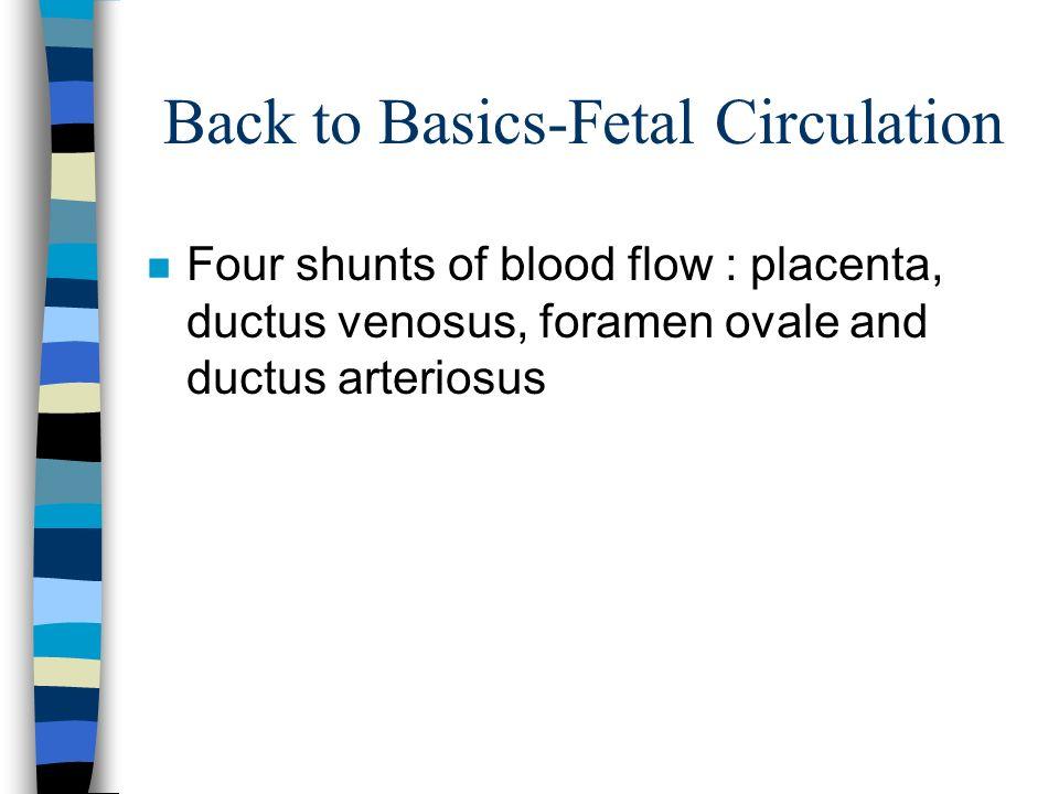 Back to Basics-Fetal Circulation
