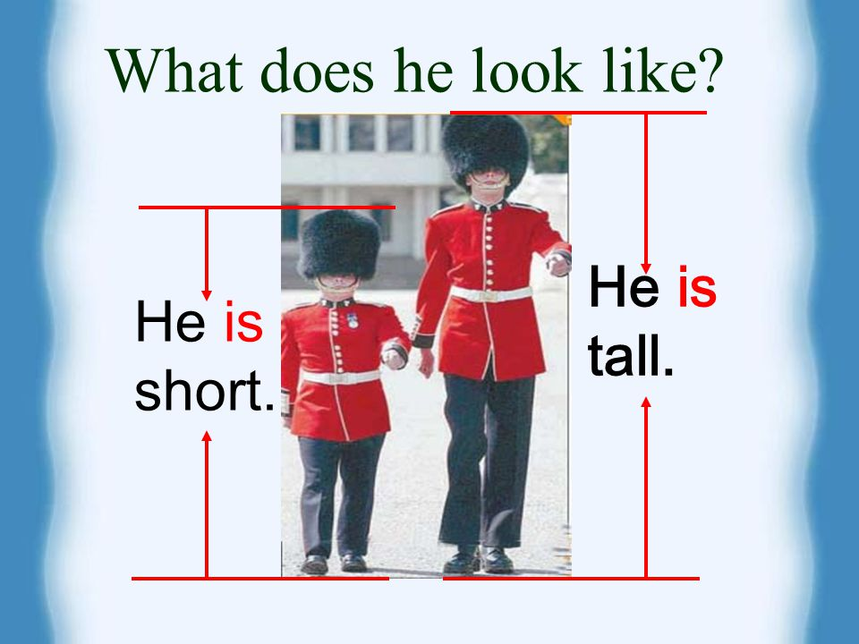 What does he look like He is tall. He is short.