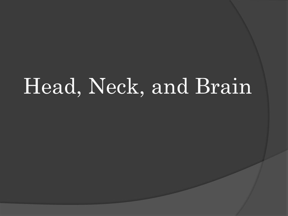 Head, Neck, and Brain