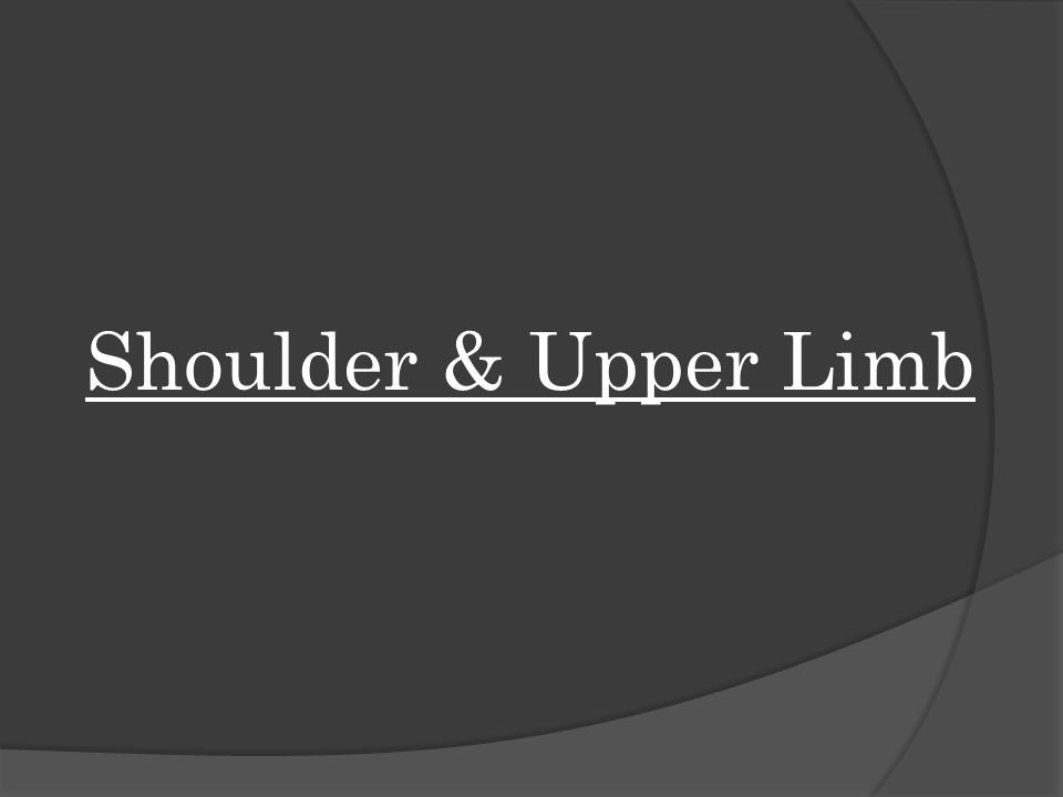 Shoulder & Upper Limb