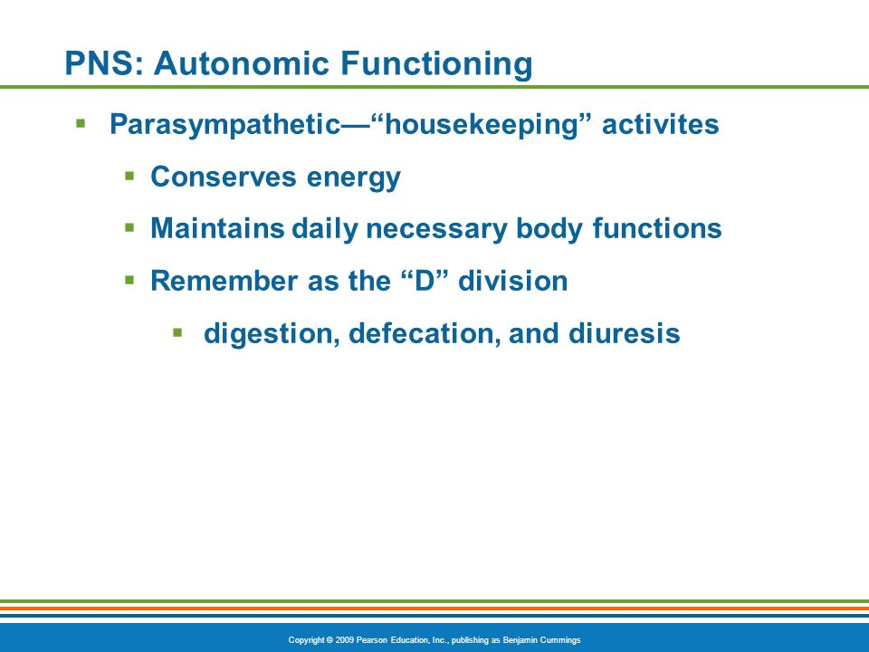 PNS: Autonomic Functioning