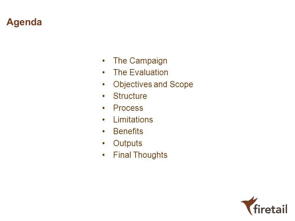 Agenda The Campaign The Evaluation Objectives and Scope Structure