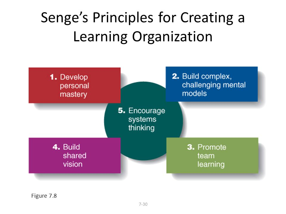Senge's Principles for Creating a Learning Organization