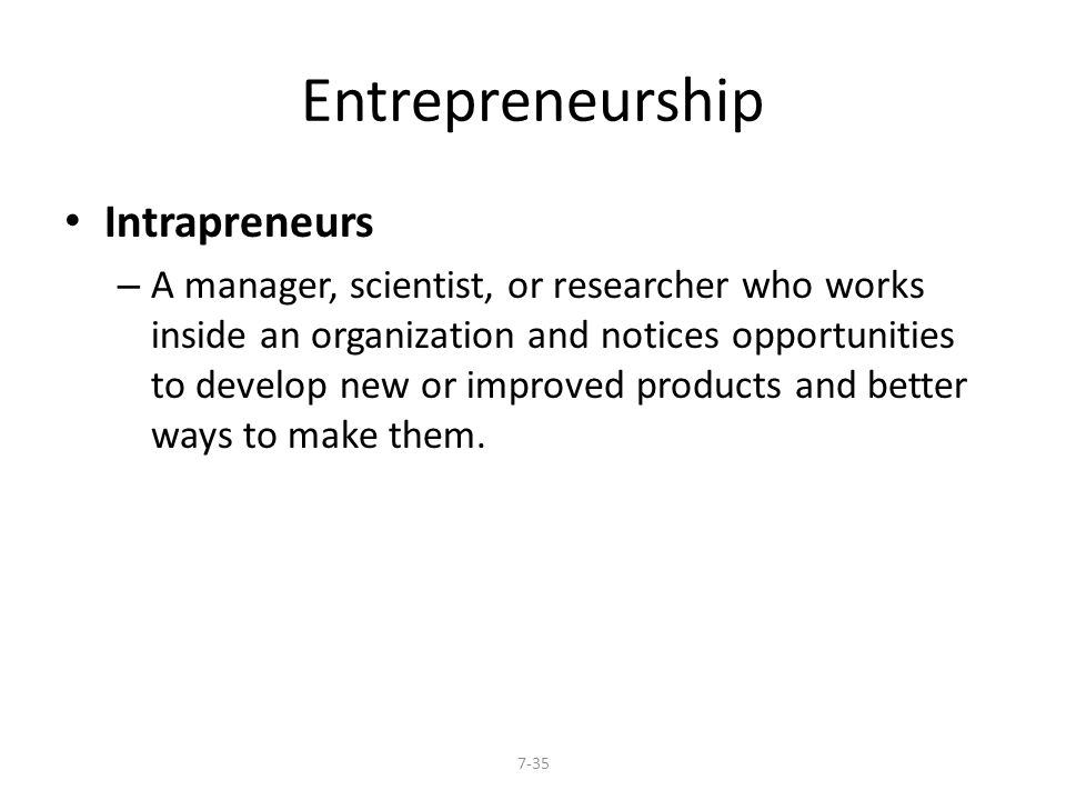 Entrepreneurship Intrapreneurs