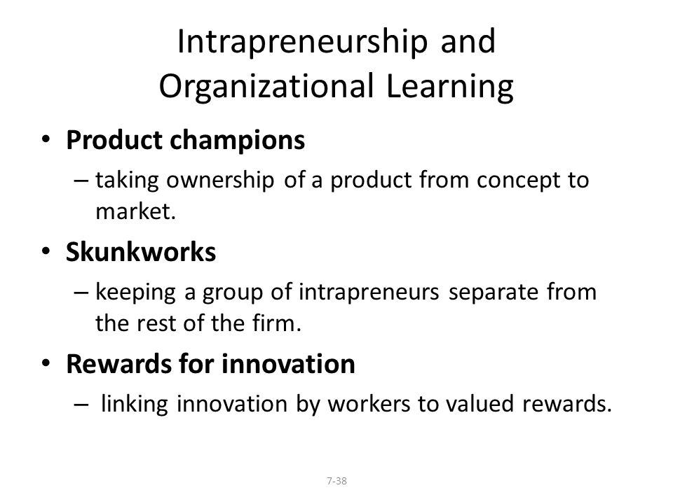 Intrapreneurship and Organizational Learning