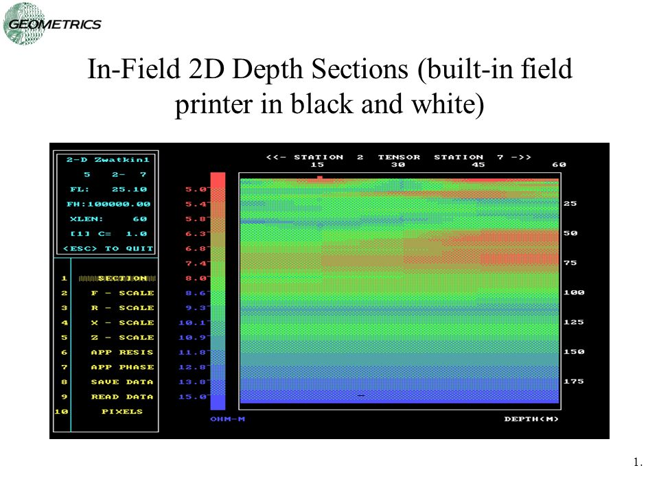 In-Field 2D Depth Sections (built-in field printer in black and white)