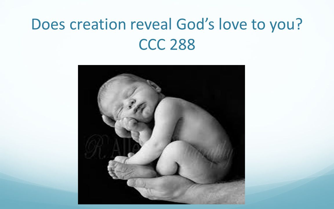 Does creation reveal God's love to you CCC 288