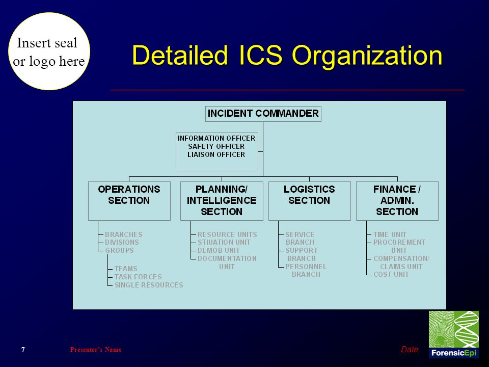 Detailed ICS Organization